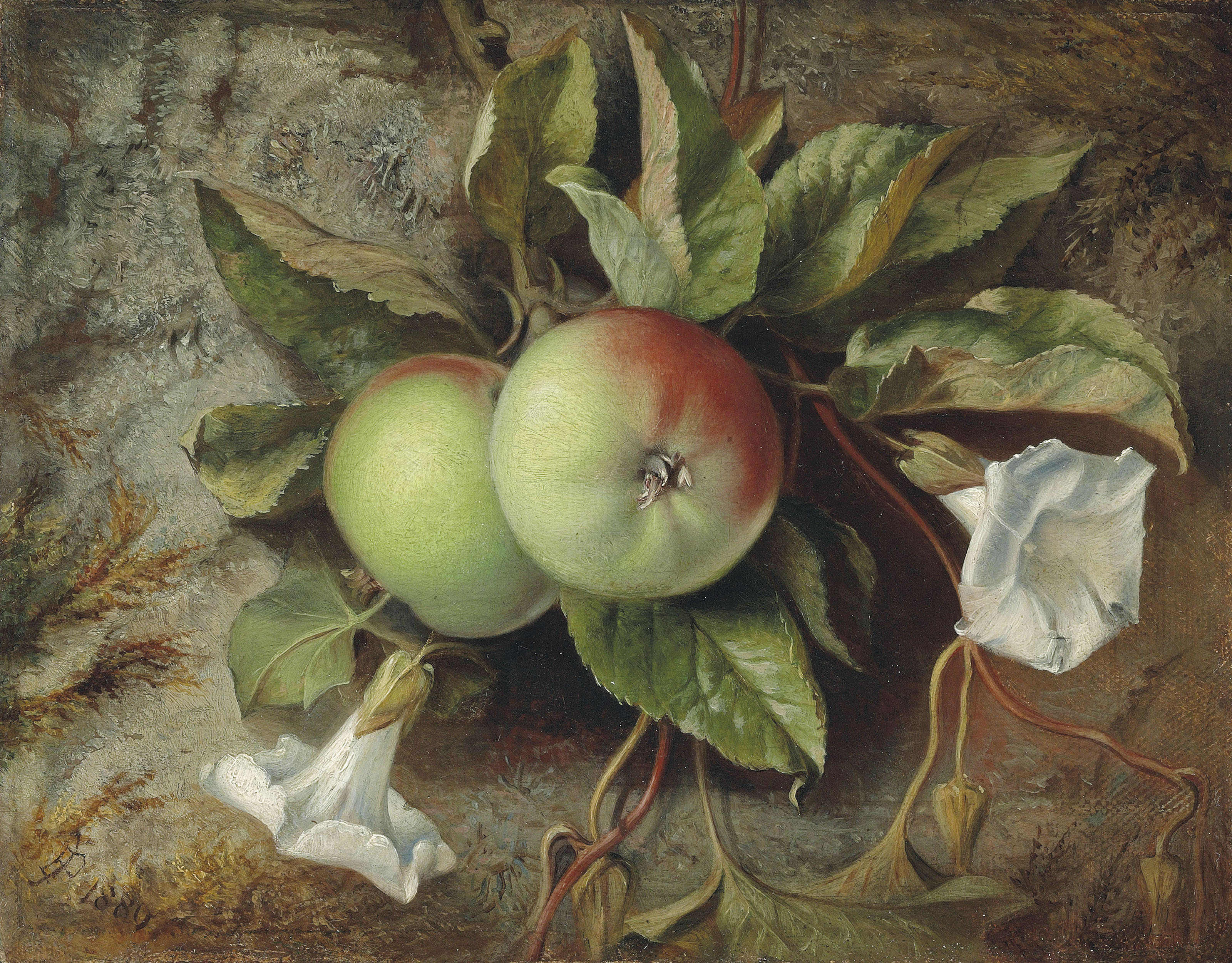 Autumn: Apples and convolvulus