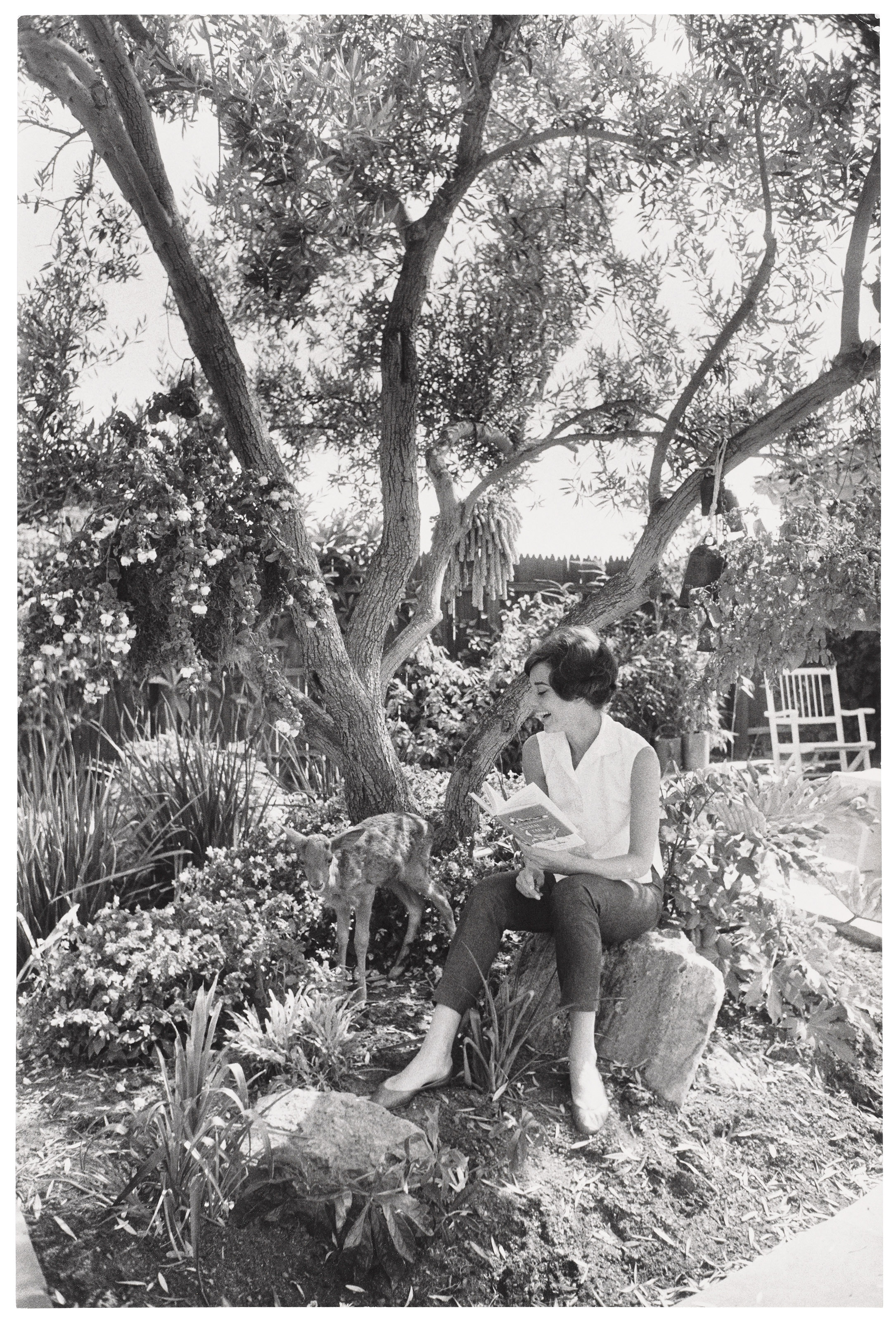Audrey Hepburn and Pippin (Ip), Beverly Hills