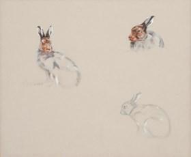 Ashley Boon (b. 1959)