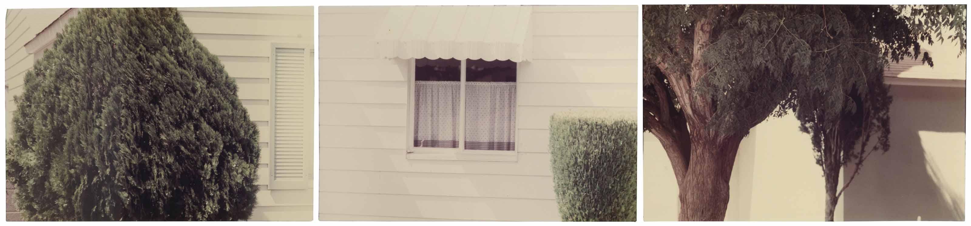 Untitled (Henderson, Nevada), 1977
