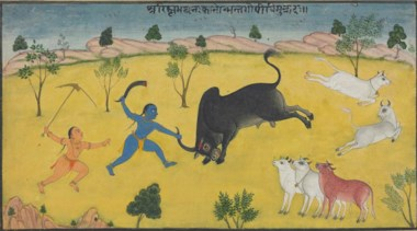 An illustration from the Bhagavata Purana Krishna slaying the Bull Demon (Arishtasura), India, Rajasthan, mid-18th century. 6 x 10⅛  in (15 x 25.8  cm). Estimate $8,000-12,000. This lot is offered in The Collection of Paul F. Walter on 26-27 September 2017  at Christie's in New York