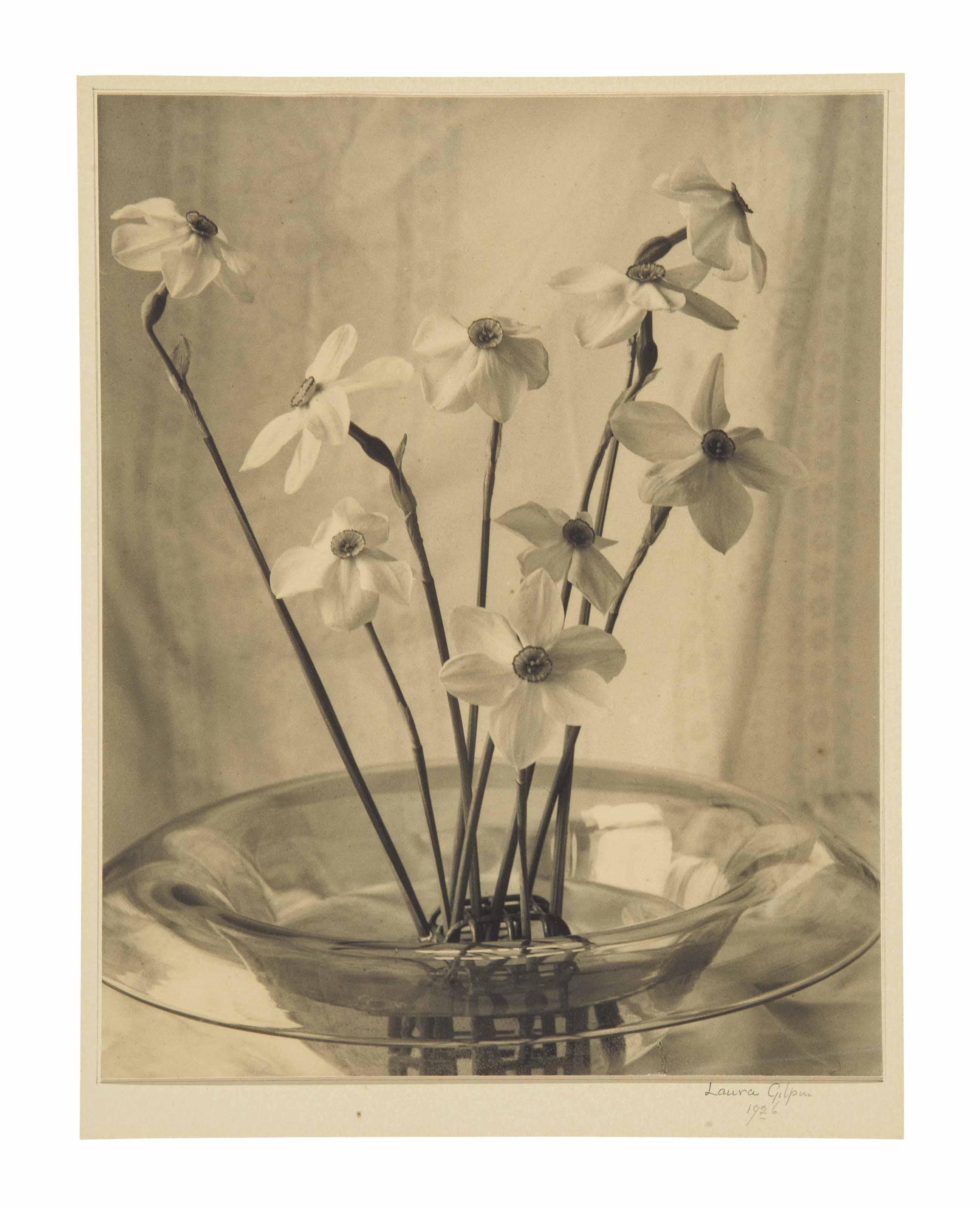 Narcissus, 1926