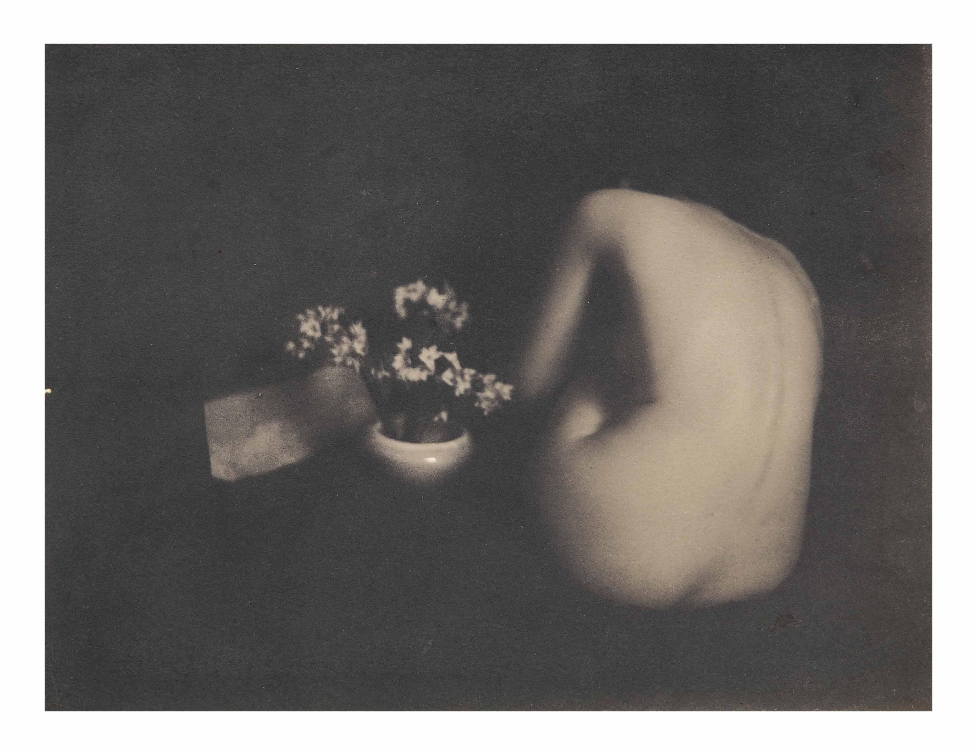 Narcissus, 1901