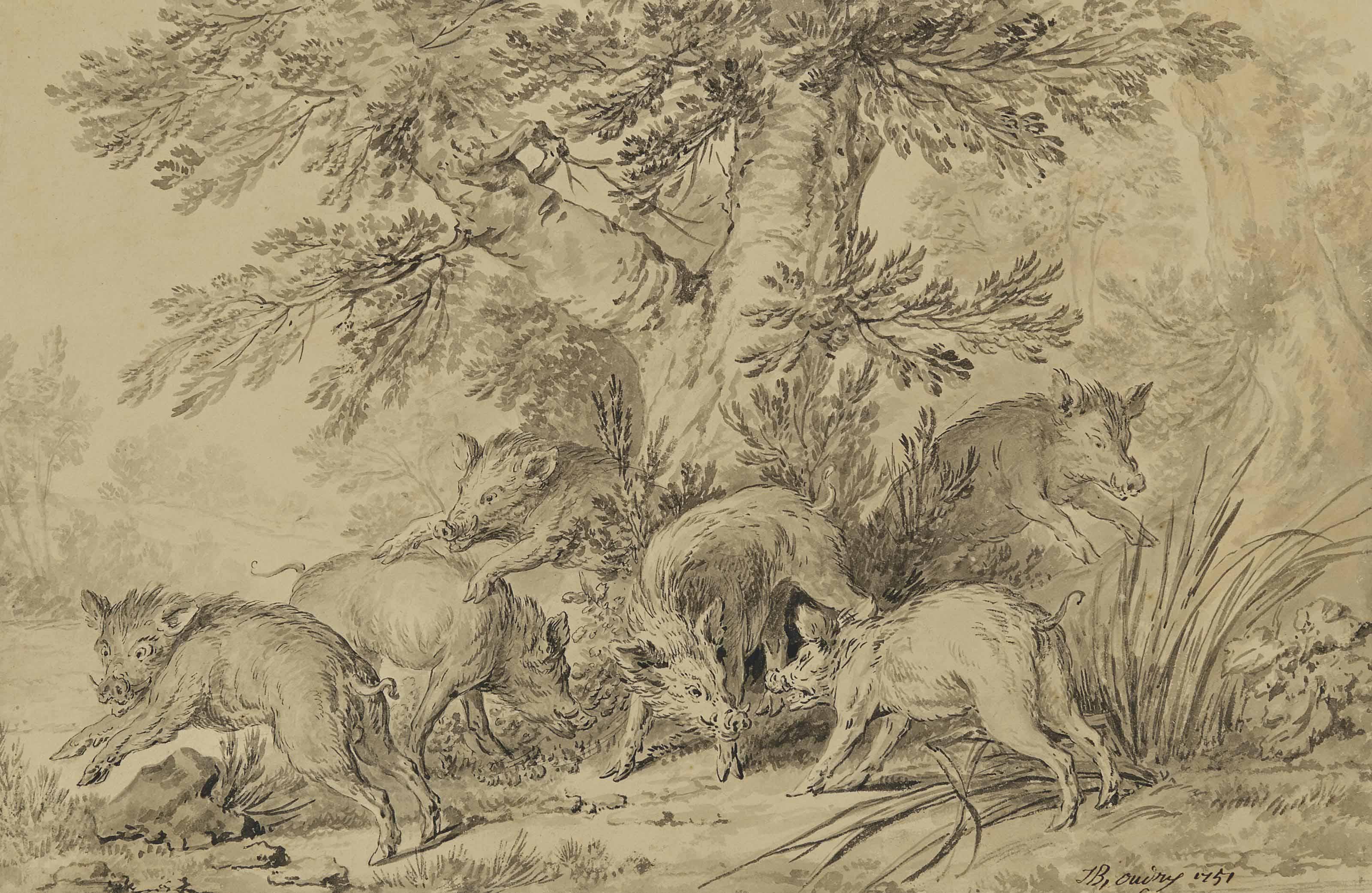 Combat de sangliers au pied d'un arbre
