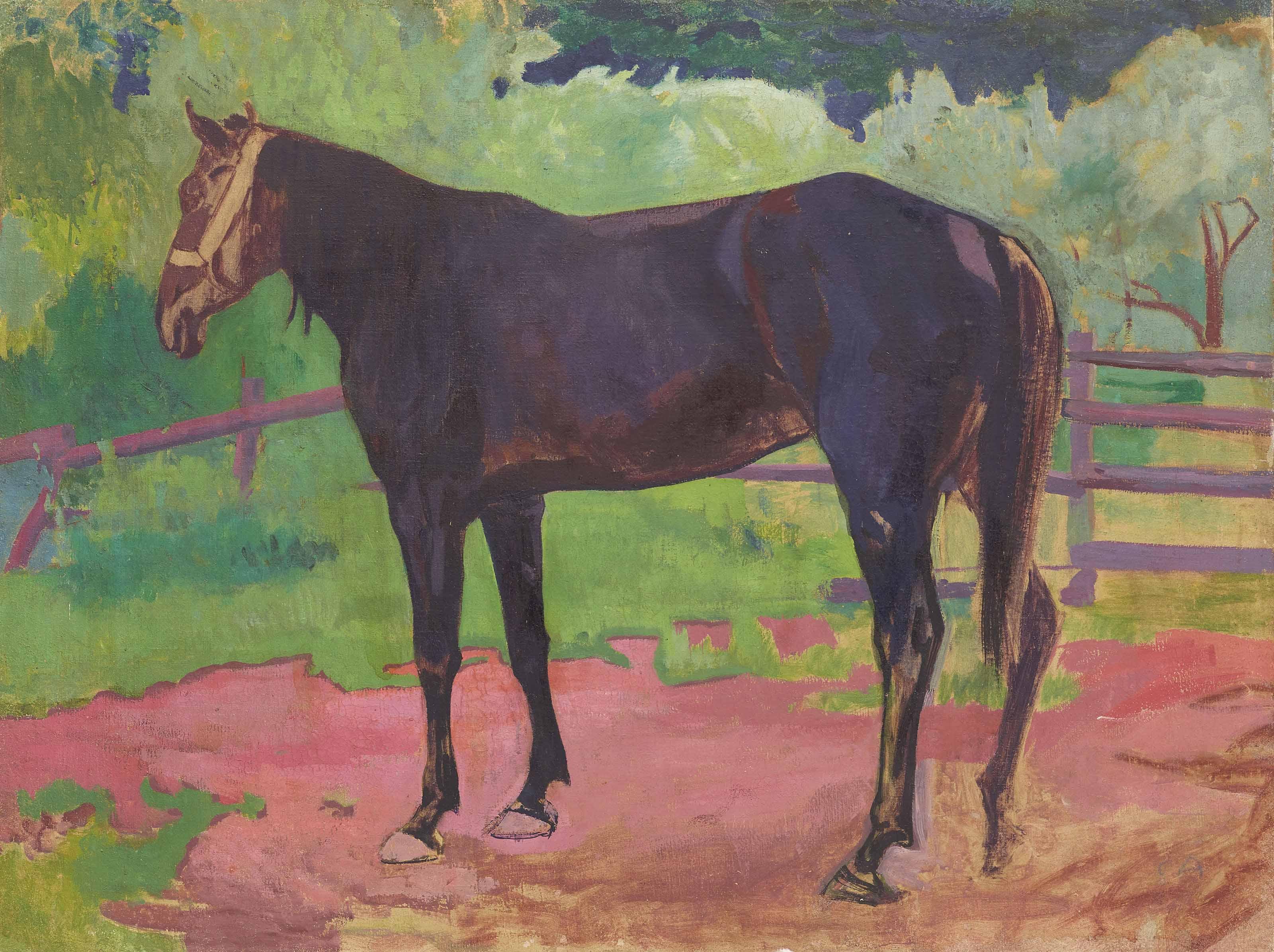 Pferd im Gehege, 1902