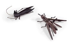 A JAPANESE SILVER ARTICULATED GRASSHOPPER, AND AN IRON MODEL OF A CRICKET