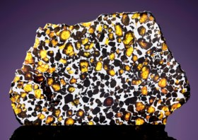 IMILAC PALLASITE PARTIAL SLICE — THE MOST BEAUTIFUL EXTRATER