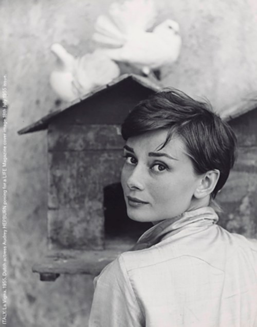 Audrey Hepburn: Part II