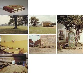 William eggleston essay