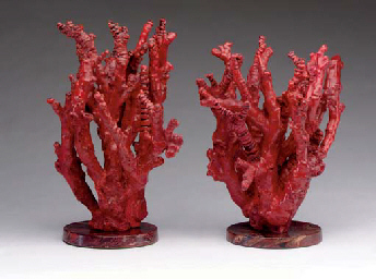 A Pair Of Branches Of Red Coral Corallium Rubrum