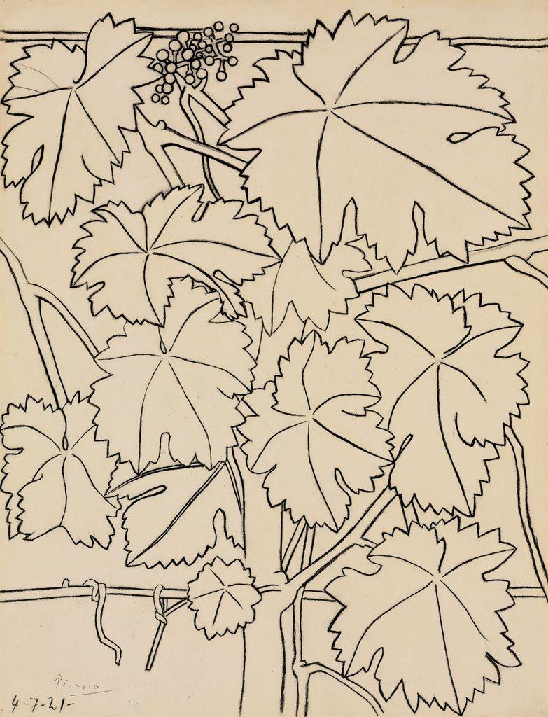 Pablo Picasso Contour Line Drawing : Pablo picasso la vigne christie s