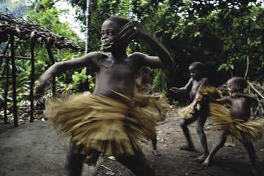 Anthropology/Mbuti Community term paper 2209