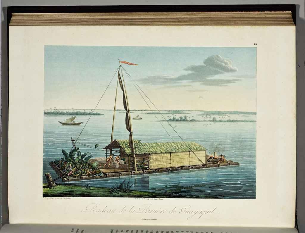 Humboldt  Friedrich Wilhelm He
