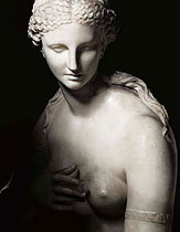 THE JENKINS VENUS, ALSO KNOWN AS THE BARBERINI VENUS