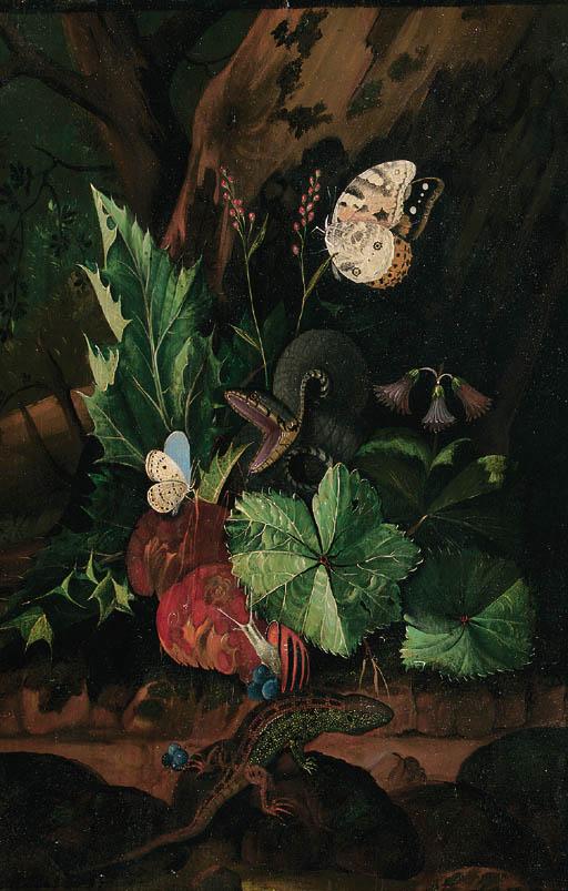 Johann Falch (1687-1727)