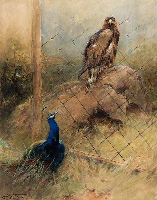 Charles Whymper (1853-1941)