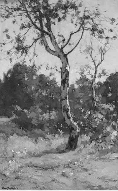 Paul Bodifée (1866-1938)