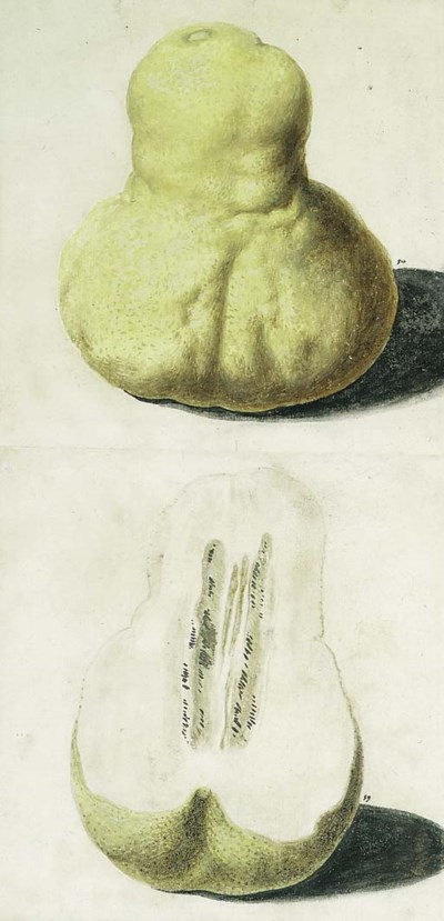 Vincenzo Leonardi (active 1621