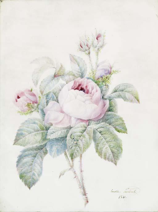 Anne-Ernestine Panckoucke (178