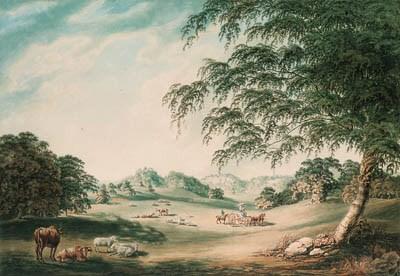 John Emes (fl. 1783-1805)