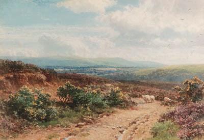 Harold Sutton Palmer (1854-193