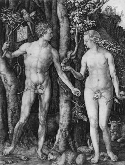 Albrecht Drer (1471-1528)