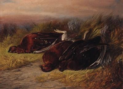 Colin Graeme, 19th Century