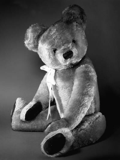 'NICKY', A CHAD VALLEY TEDDY B