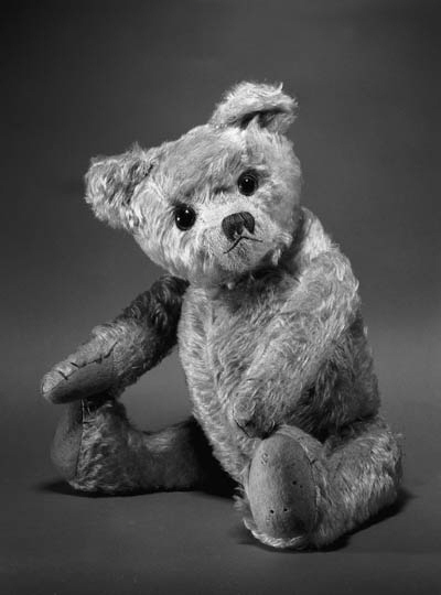 AN ENGLISH TEDDY BEAR