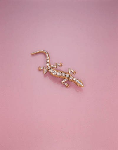 A DIAMOND AND RUBY LIZARD CLIP