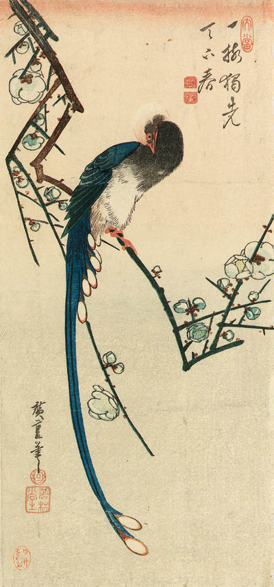 HIROSHIGE: o-tanzaku (37.3 x 17.8cm.); a long-tailed bird on a flowering plum branch, a poem on top, signed Hiroshige hitsu and published by Wakasaya Yoichi [Jakurindo]--very good impression, slightly faded, horizontal creases, worming restored mainly on top