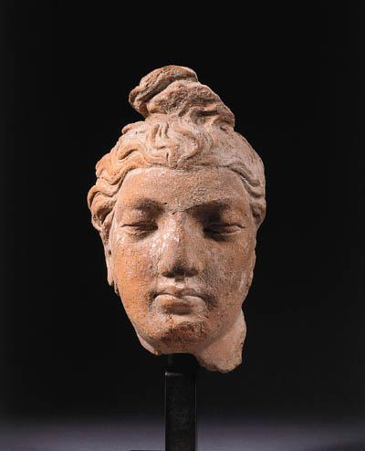 a gandhara terracotta head of