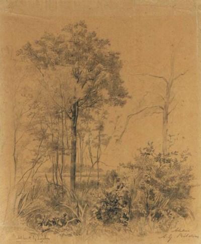 Albertus Gerardus Bilders (183