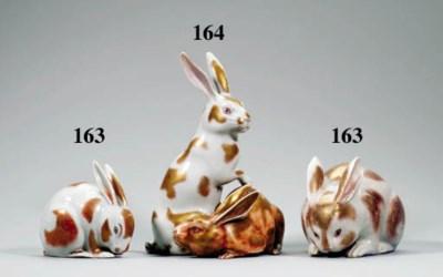An Arita model of rabbits