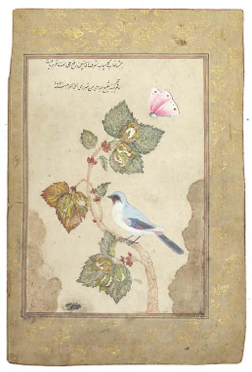 A bird and flower study