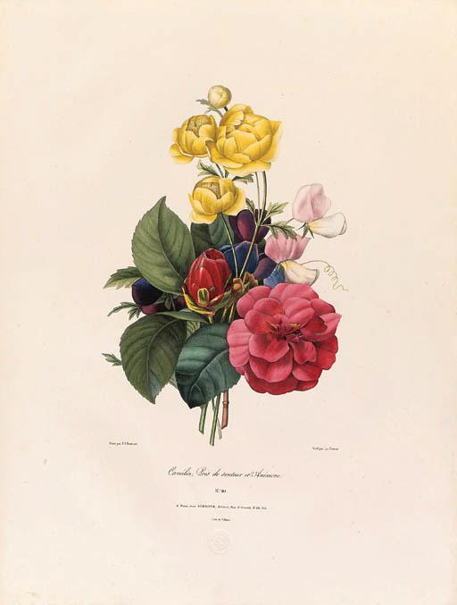 Pierre-Joseph Redout (1759-184