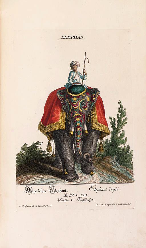 Johann Elias Ridinger (1698-17