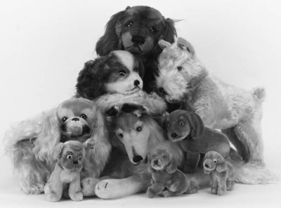 Steiff dogs post-1950s