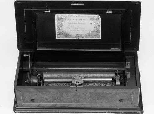 A Mandoline Tenor musical box
