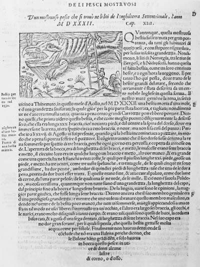 MAGNUS, Olaus.  Historia delle