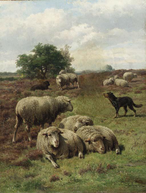Cornelis van Leemputten (Belgi