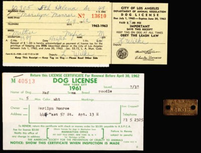 DOG TAG AND LICENSE FOR
