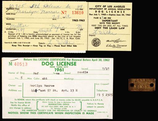 "DOG TAG AND LICENSE FOR ""MAFIA"""