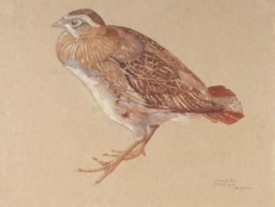 Sjoerd Hendrik de Roos (1877-1