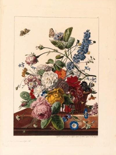 Antoine M. Chazal (1793-1854)