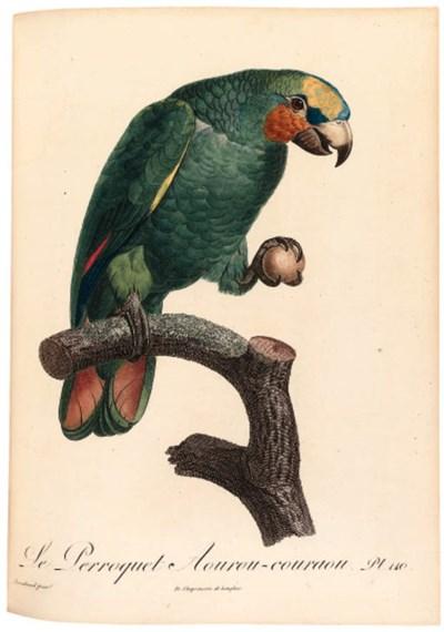 Franois Levaillant (1753-1824)
