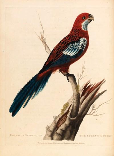 George Shaw (1751-1813)