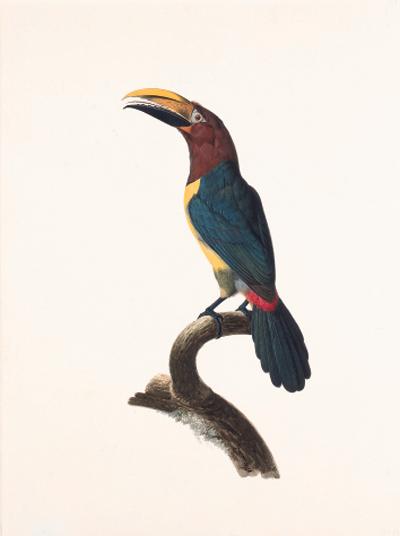 Jacques BARRABAND (1767/68-180