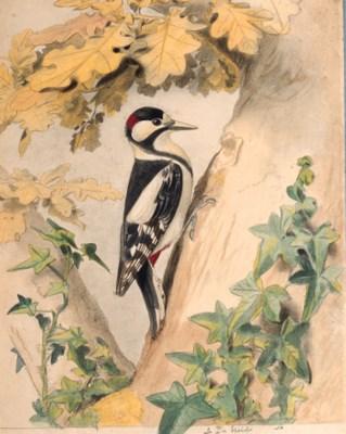 Edouard TRAVIES (1809- circa 1
