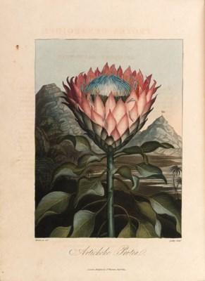 THORNTON, Robert John (c.1768-